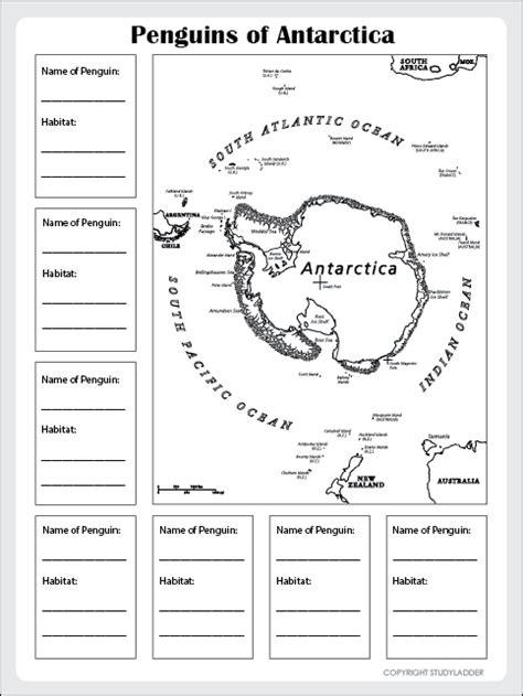 penguin habitats  antarctica worksheet studyladder