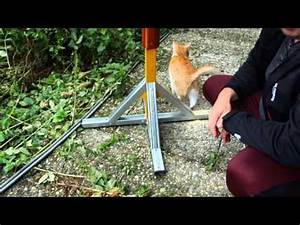 Vogelfutterspender Selber Bauen : vogelfuttersilo aus milcht te funnydog tv ~ Whattoseeinmadrid.com Haus und Dekorationen