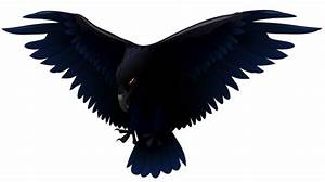 Scary Raven PNG Vector Clipart | Gallery Yopriceville ...