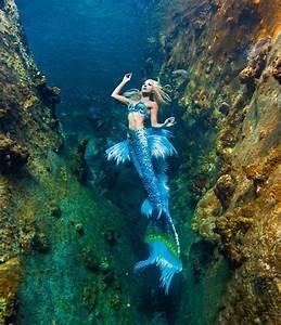 Levensechte Zeemeermin Die Tussen Haaien Zwemt En 2