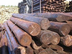 Piquet De Cloture Bois Acacia : cl ture bois calibr s et demi ronds ~ Dailycaller-alerts.com Idées de Décoration