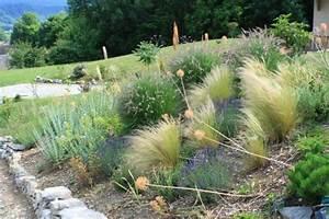 amenager un talus en pente a l ombre pictures to pin on With amenager jardin en pente 10 kit de 15 vegetaux pour talus et couvre sol kit talus