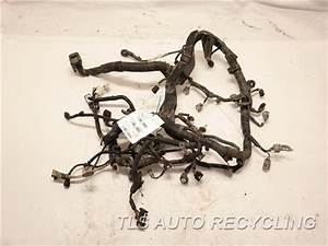 2008 Toyota Avalon Engine Wire Harness