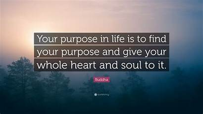 Purpose Soul Buddha Quote Give Heart Whole