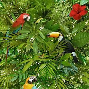 Papier Peint Papillon Oiseau : muriva tropical oiseau perroquet motif papier peint jungle ~ Zukunftsfamilie.com Idées de Décoration