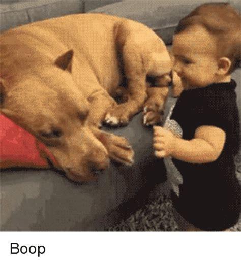 Boop Meme - boop boop meme on sizzle