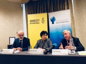amnesty  iccl  joint appeal   vote  blasphemy referendum irish council
