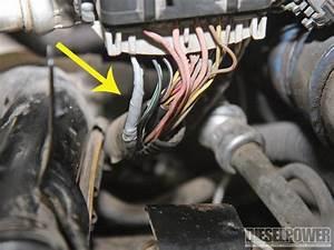 Duramax Injector Wiring Diagram : excellent lb7 duramax wiring harness diagram lb7 injector ~ A.2002-acura-tl-radio.info Haus und Dekorationen