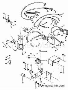 Wiring Harness And Electrical Components