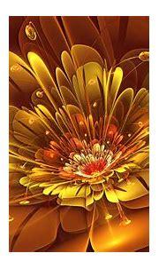 [50+] Google Images Flowers Wallpaper on WallpaperSafari