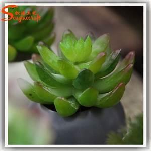 Plante Grasse Artificielle : plantes artificielles succulentes gros succulentes petits ~ Teatrodelosmanantiales.com Idées de Décoration