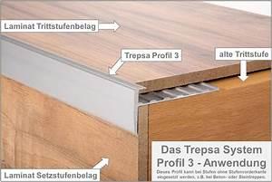 Unterschied Estrich Und Beton : profil 1 mit verblendung raucheiche clip alte treppe neu ~ Indierocktalk.com Haus und Dekorationen