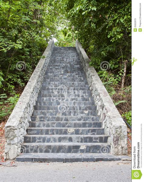 stairs in the park stock photos image 25652973