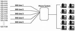 Phoneinstallers Net