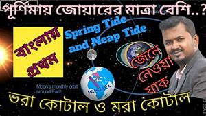 Tides  Spring Tide  Neap Tide  Origin Of Spring Tide And Neap