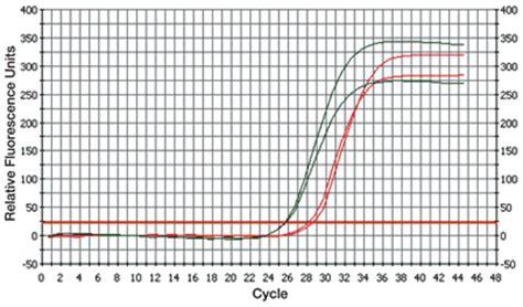 MMLV Reverse Transcriptase 1st-Strand cDNA Synthesis Kit ...