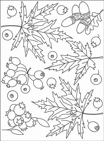 Coloring Autumn Pages Nicole Fall Leaves Leaf