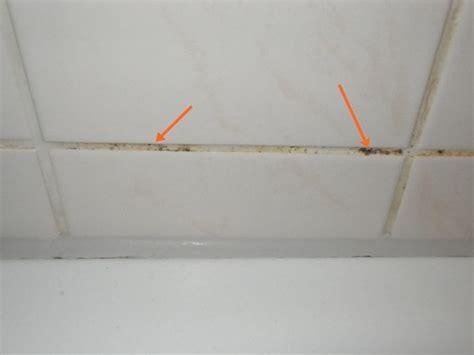 schimmel silikon entfernen schimmel im bad richtig entfernen energie fachberater