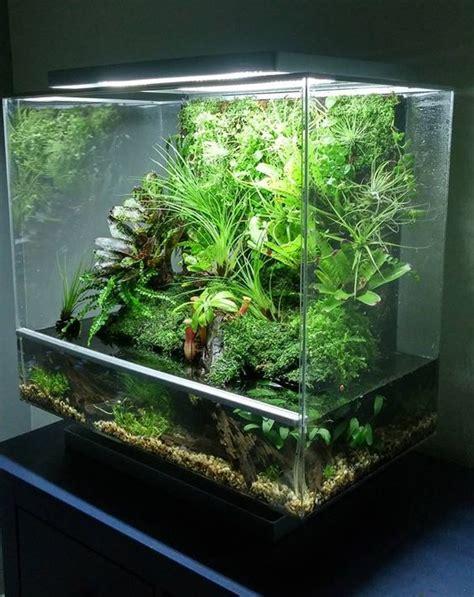 Aquascape  Pin By Aqua Poolkoh  Aquarium  Fish Tank