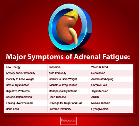 phases  adrenal fatigue drjockerscom