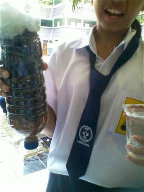 membuat alat penjernih air  kurikulum  oleh wijaya