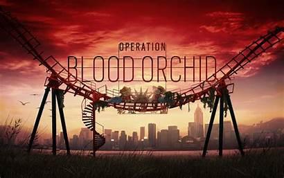 Rainbow Six 4k Siege Orchid Operation Blood