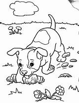 Coloring Dog Boxer Puppy Realistic Dogs Chihuahua Digging Hole Animal Drawing Funny Lab Printable Colouring Clipart Getcolorings Pond Clip Place sketch template