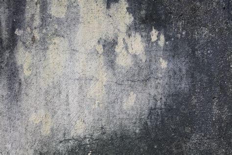 Free photo: Grunge wall texture Dark Dry Grey Free