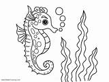 Coloring Sea Pages Under Horse Printable Bubbles Adults Marine Whitesbelfast sketch template