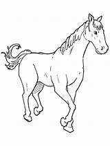 Horse Coloring Horses Walking Strong Outline Colouring Netart Svg Template sketch template