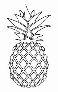 best pineapple template ideas and images on bing find what you