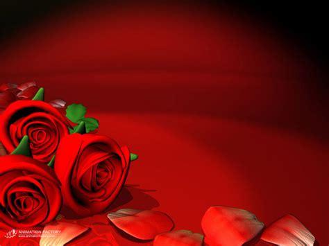 Animated Roses Wallpaper - flower wallpaper hd wallpapers pulse