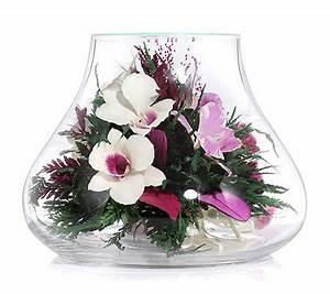 Orchideen Im Glas : pur fleur echtblumen orchideen im glas glockenform h ca ~ A.2002-acura-tl-radio.info Haus und Dekorationen