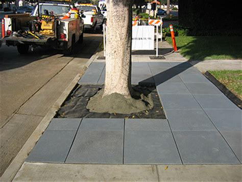 sidewalks urban design landscape plants edward