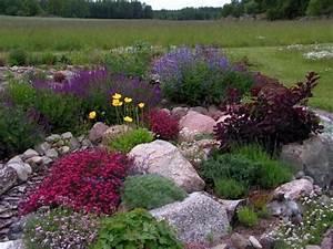Steingarten Bilder Beispiele : steingarten anlegen 116 gestaltungsideen und tipps ~ Watch28wear.com Haus und Dekorationen