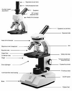 Microscope Maintenance Tips