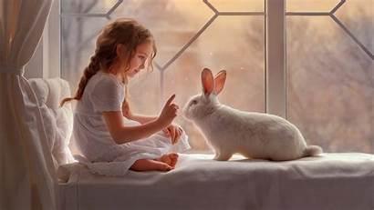 Rabbit Wallpapers 1366 1080