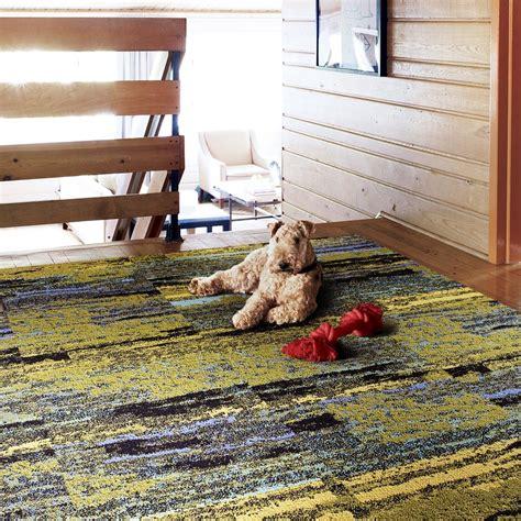 cambium  images carpet tiles colorful rugs carpet