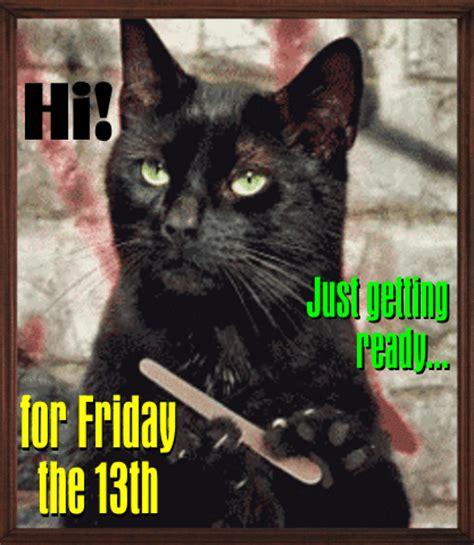 cat  ready  friday   ecards greeting
