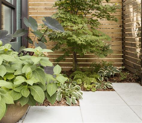 Walled Home With Wow Factor by Low Maintenance Gardens How To Get The Wow Factor All