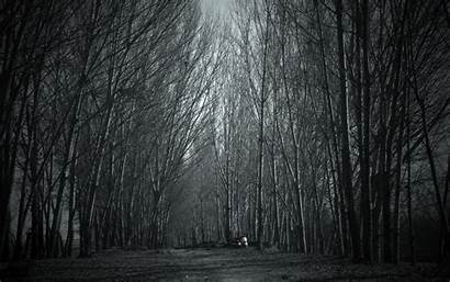 Forest Haunted Creepy Spooky Wallpapers Scary Clipart