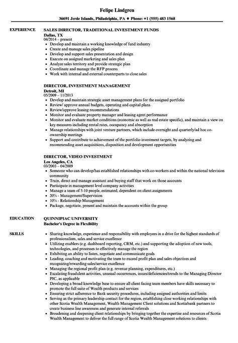 resume template free sle