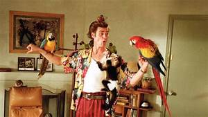 Food Service Resume 14 Alrighty Facts About 39 Ace Ventura Pet Detective