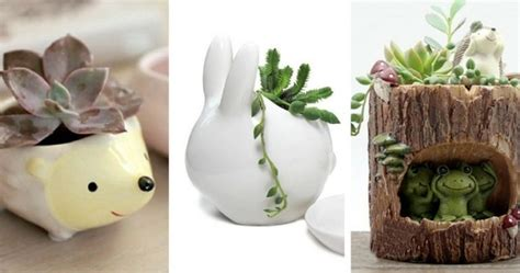 7 Different Animal-shaped Succulent Planters Just In Time