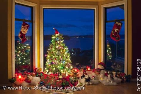 christmas scene tree lights decorations window dusk