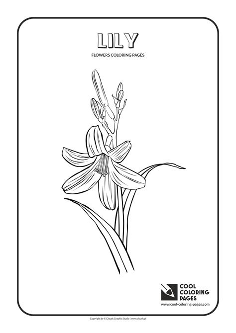 cool coloring pages flowers coloring pages cool coloring pages  educational coloring