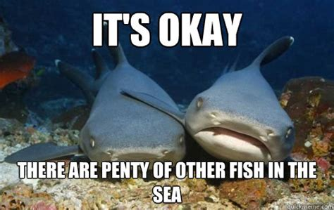 Fish In The Sea Meme - it s okay there are penty of other fish in the sea compassionate shark friend quickmeme