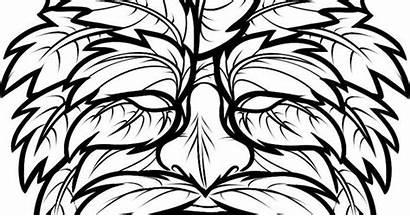 Wood Patterns Draw Burning Step Glass Woods