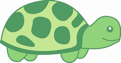Clipart Cozy Cliparts Clip Library Bed Turtle