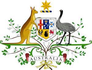 the wattle australia s national floral emblem creakingbones